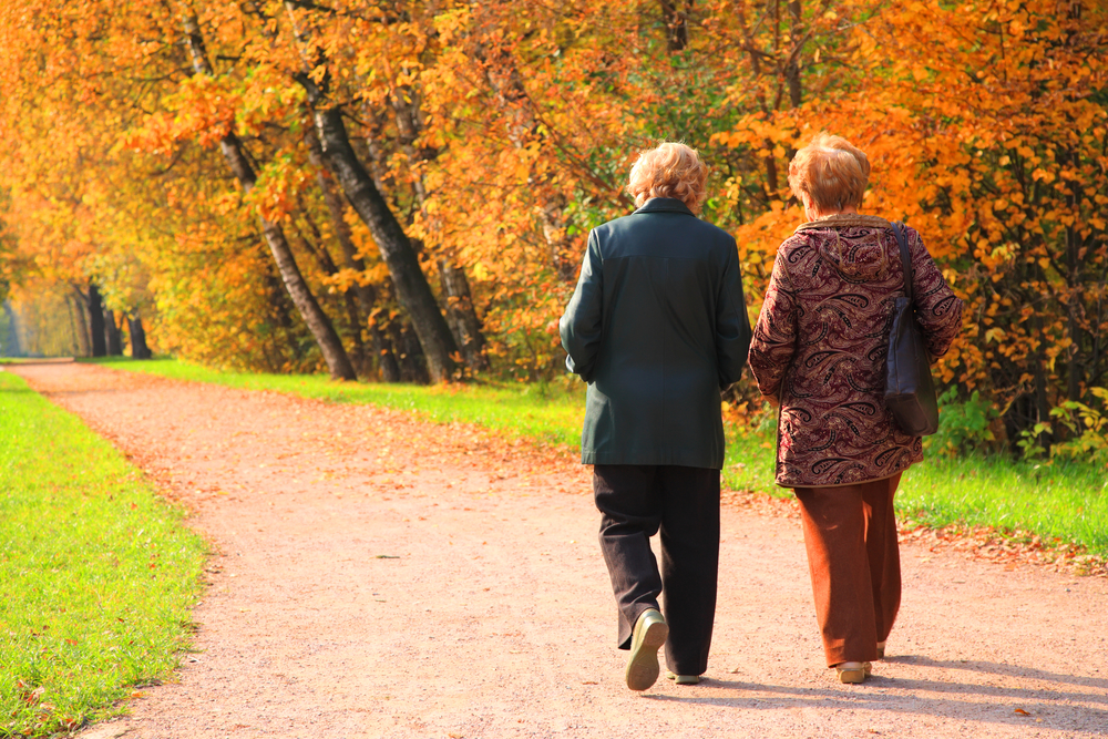3 Important Ways To Treat The Elderly Loved One In Your Life